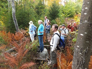 the site selection committee surveys a wetland