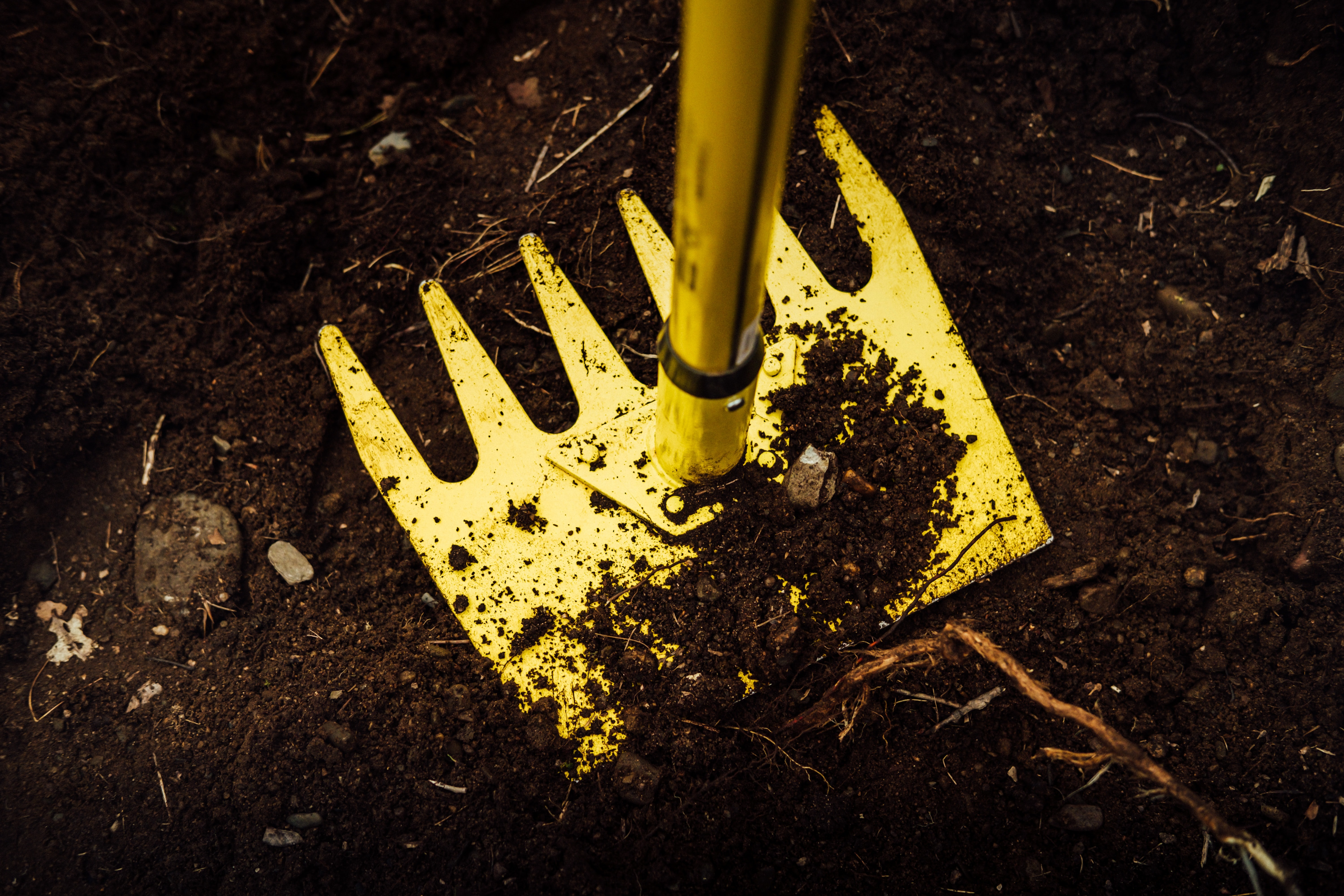 A yellow landscaping rake pressed into dark brown dirt