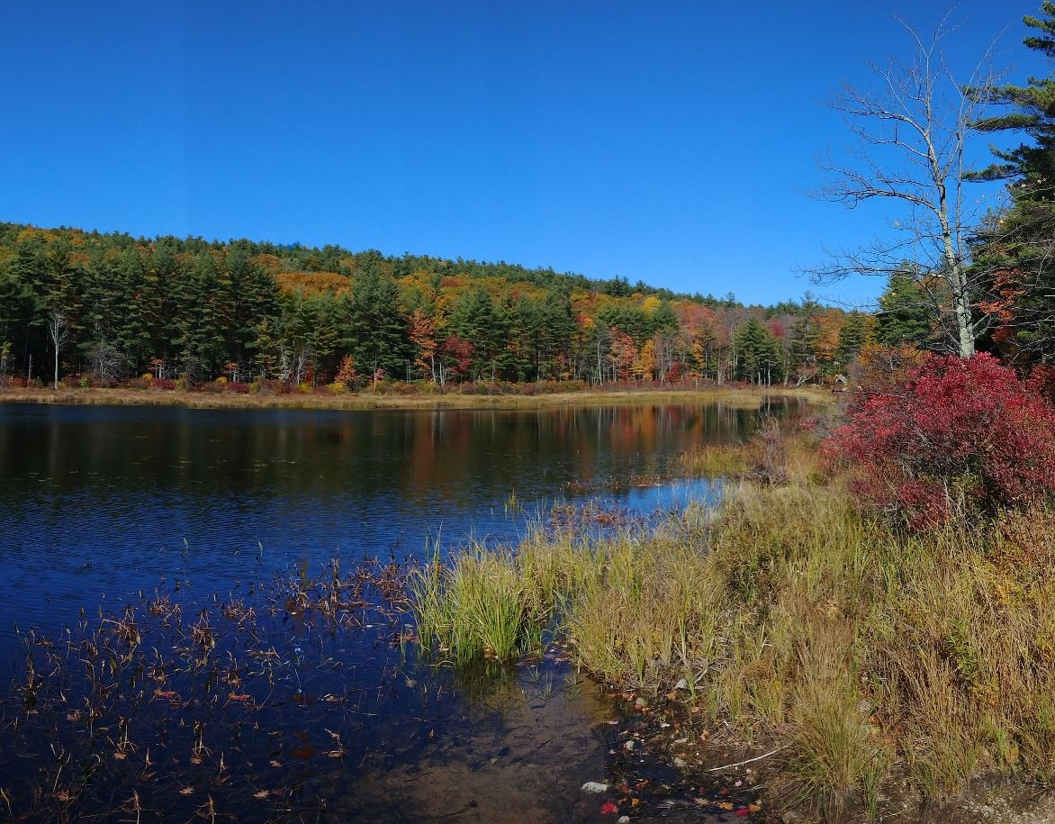 an image of a serene lake lined with fall-colored trees