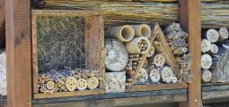 wood with drilled holes and bamboo rods are placed in an insect hotel structure